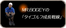 MR.BOGEY